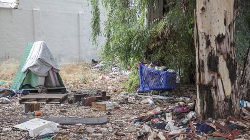 Acumulación de basura en el solar, junto a la tapia del cementerio