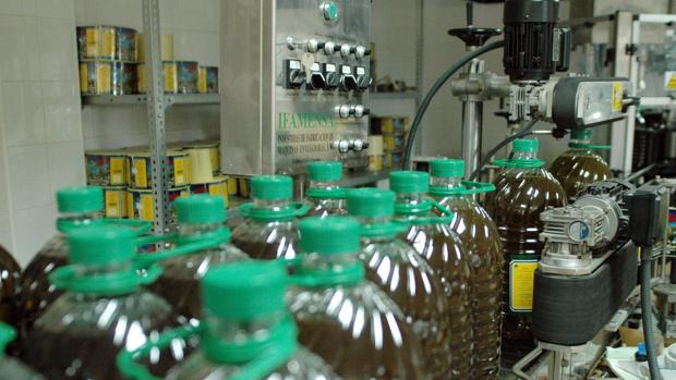 Envasado de aceite de oliva