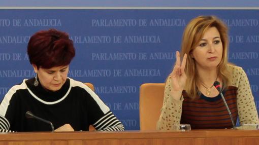 Esperanza Gómez y Carmen Lizárraga lideran la candidatura Ahora Andalucía