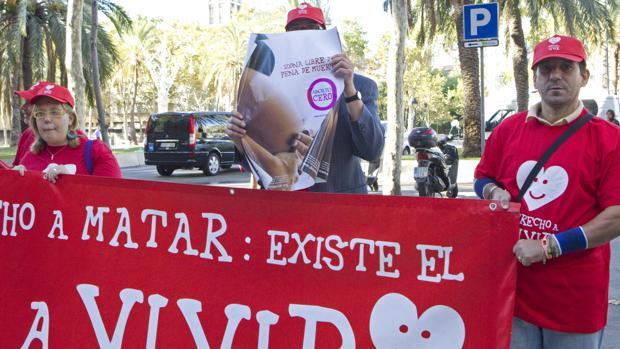 Manifestación de partidarios de Provida