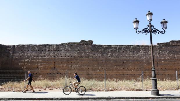 Imagen de la Muralla de la Ronda del Marrubial