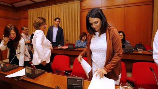 Concejales del PSOE y de IU en un Pleno del Ayuntamiento cordobés