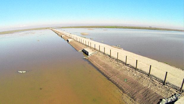 Obra de la CHG en el río Guadalquivir para recuperar su cauce