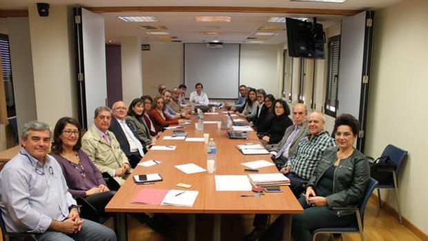 Los miembros de la comisión comnstituida ayer en la sde central del Servicio Andaluz de Salud