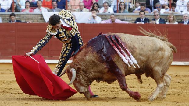 Finito de Córdoba, durante una corrida en el Coso de los Califas