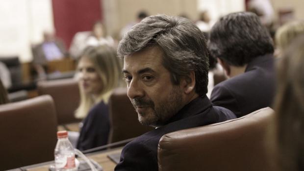 El parlamentario andaluz del PP, Miguel Ángel Torrico