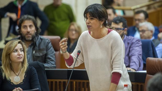 El grupo parlamentario de Podemos Andalucía solo aportó dinero a causas solidarias sus seis primeros meses en el Cámara