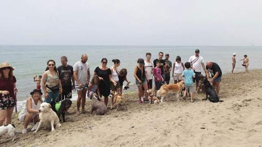 Inauguración de las playas caninas en Marbella