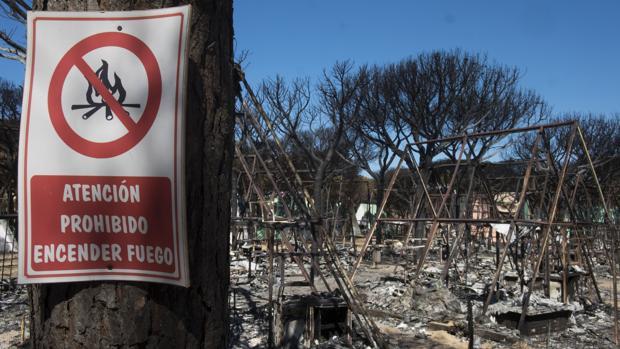 Estado en el que quedó el camping de Doñana