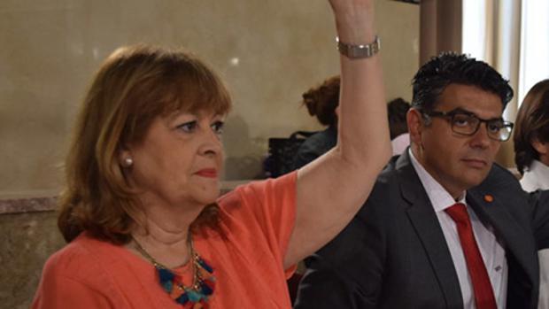 Mabel Hernández, en un Pleno durante su etapa en Ciudadanos