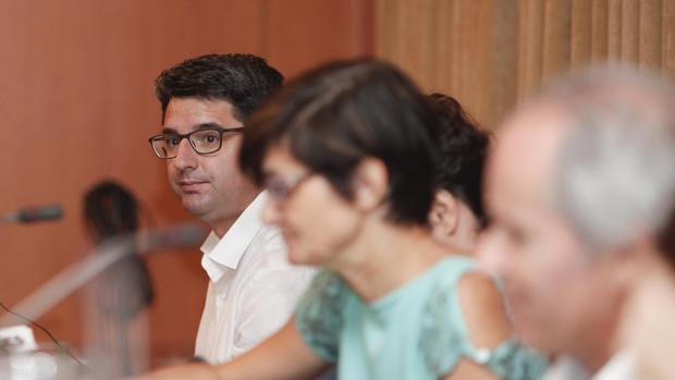 El portavoz de Izquierda Unida en el Ayuntamiento de Córdoba, Pedro García durante un pleno