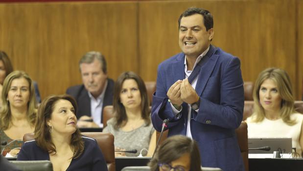 El líder de los populares andaluces, Juanma Moreno, gesticula en el Parlamento