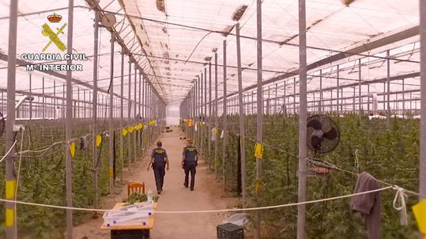 Interior de la plantación desmantelada en Níjar