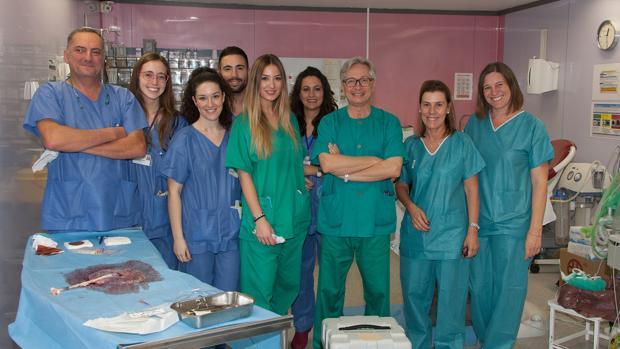 Equipo de la Unidad Genética, Reproducción Asistida y Medicina Fetal que lidera Guillermo Antiñolo