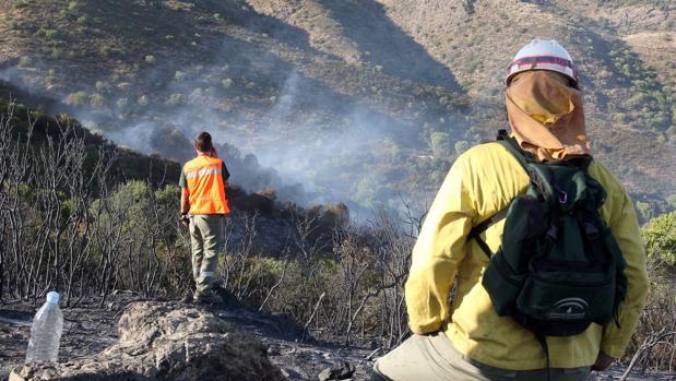 Imagen de los bomberos forestales de la agencia Amaya de Medio Ambiente en un incendio