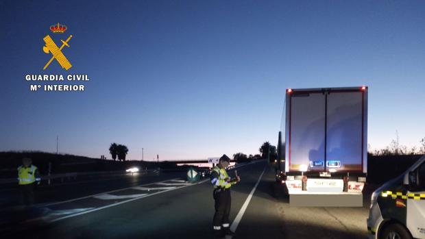 El camión inmovilizado por la Guardia Civil