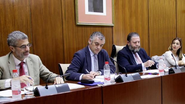 Javier Carnero, en la comisión de Empledo del Parlamento andaluz