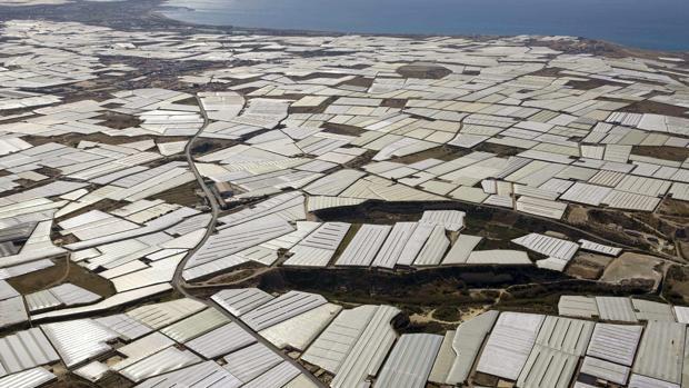 Invernaderos en El Ejido