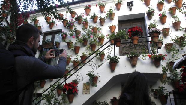 Patio de la calle de Langosta, 7 en el barrio de San Basilio de Córdoba