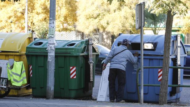 Un hombre mira en el interior de un contenedor de papel y cartón en Córdoba