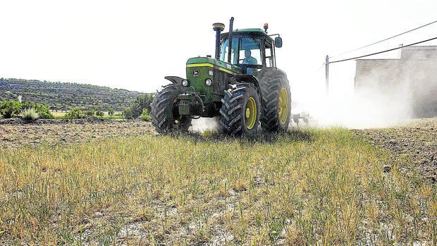 Un tractor en el campo cordobés