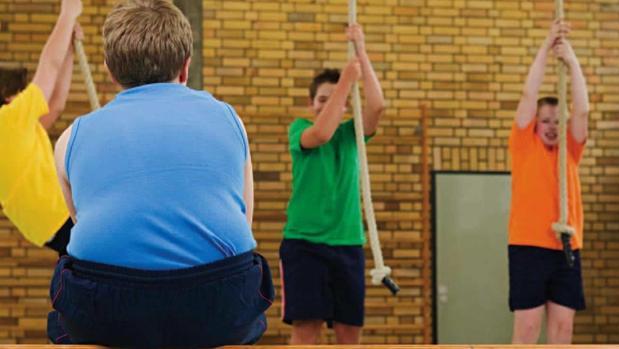 El 16,6 por ciento de los niños andaluces tienen exceso de peso