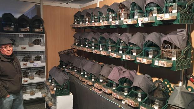 Feria de la perdiz de Cabra, una de las más importantes del sector en la provincia