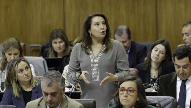 Carmen Crespo durante una intervención en el Parlamento andaluz