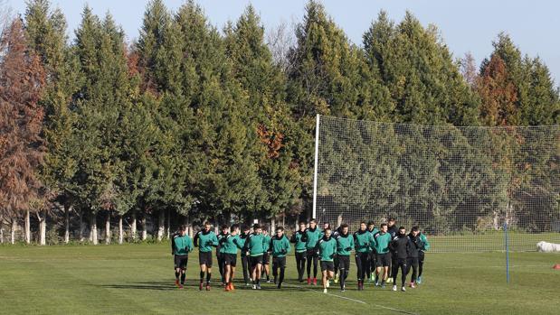 La plantilla del Córdoba CF, en un entrenamiento en la Ciudad Deportiva Rafael Gómez