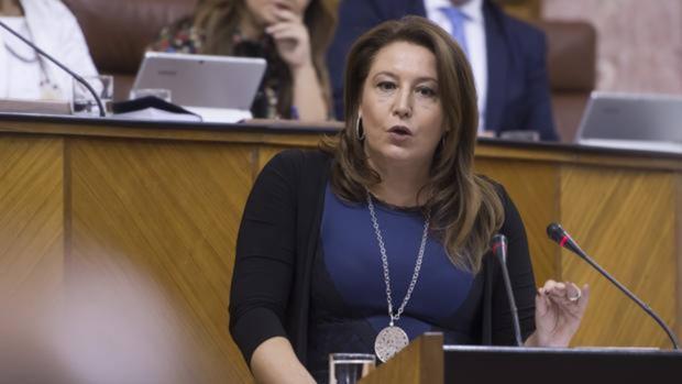 Carmen Crespo, en el Parlamento