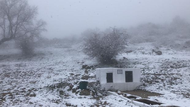Paraje de la Viñuela en la Sierra de Cabra tomado esta mañana por la nieve