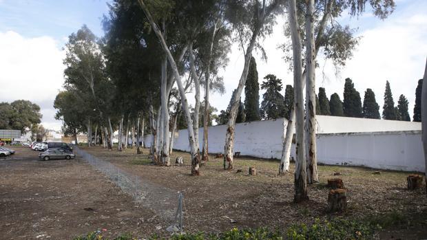 Solar junto al cementerio de San Rafael de Córdoba en que se construirá el nuevo tanatorio
