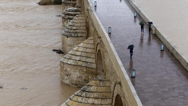 Paseantes por el Puente Romano con paraguas