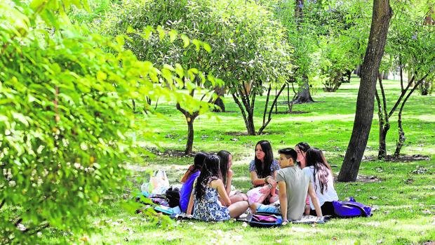 Unos jóvenes en el Parque Cruz Conde de Córdoba