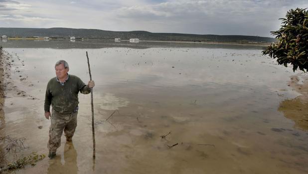Inundaciones de 2010 en la zona de Llanos del Sotillo, en Andújar