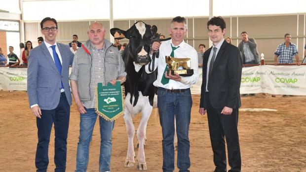 La vaca frisona ganadora