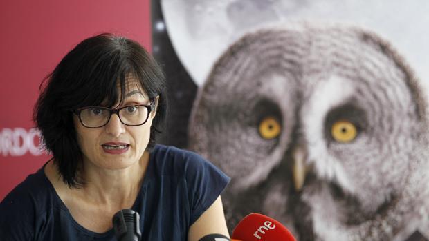 La concejala de Infraestructuras, Amparo Pernichi (PSOE)