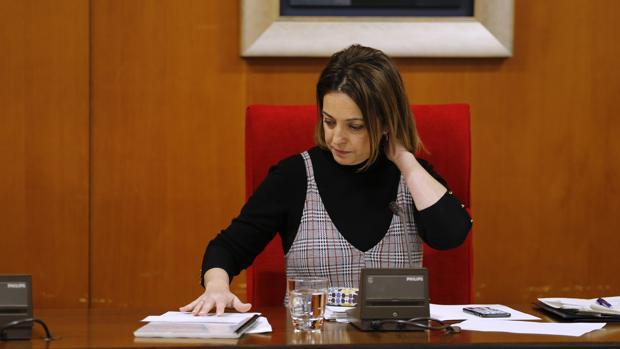La alcaldesa de Córdoba, en un Pleno municipal