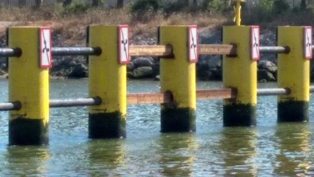 En el centro, los dos tramos de barrera que han sido reparados