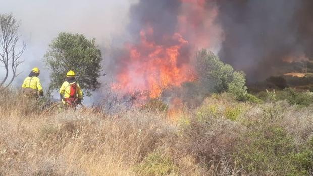 Incendio forestal en el paraje de Casares