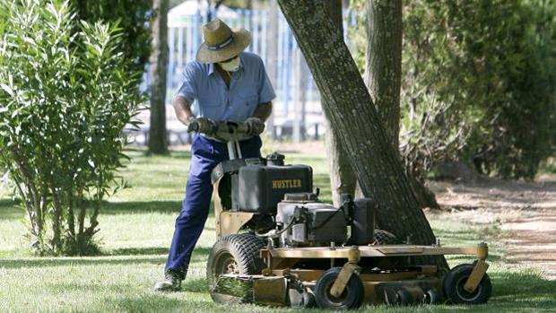 Un trabajador municipal en un parque de Córdoba