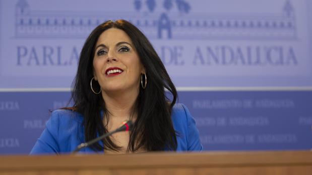 Ángeles Férriz, durante la rueda de prensa en el Parlamento