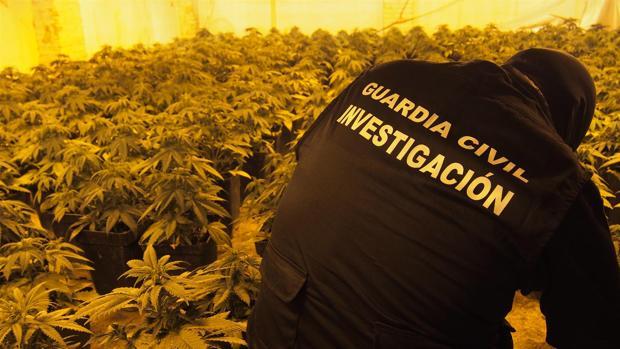 La Guardia Civil ha detenido a seis personas durante esta operación antidroga en Granada.