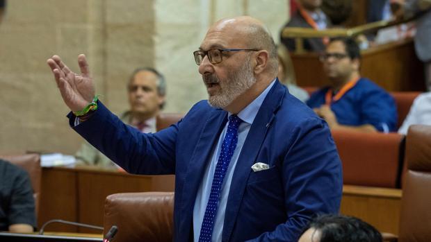 El portavoz de Vox, Alejandro Hernández, durante una intervención en el Parlamento