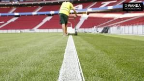 Un operario pinta las líneas del césped del Wanda Metropolitano