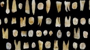 El Homo Sapiens llegó a China hace unos 100.000 años, mucho antes que a Europa