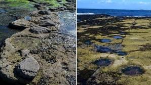 Huellas de dinosaurios en la isla escocesa de Skye