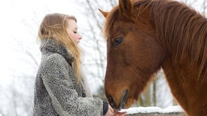 Los caballos pueden reconocer las emociones en los rostros humanos