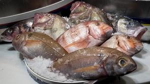 El pescado podrido, clave en las primeras «ciudades» europeas