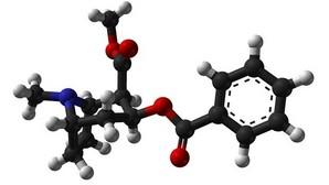 Científicos españoles averiguan por qué la cocaína tarda tan poco tiempo en llegar al cerebro